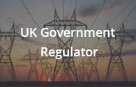 Government Regulator