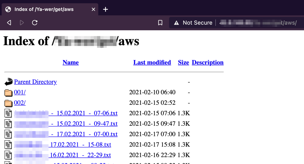 Figure 3. Open directory with malware, stolen credentials and statistics