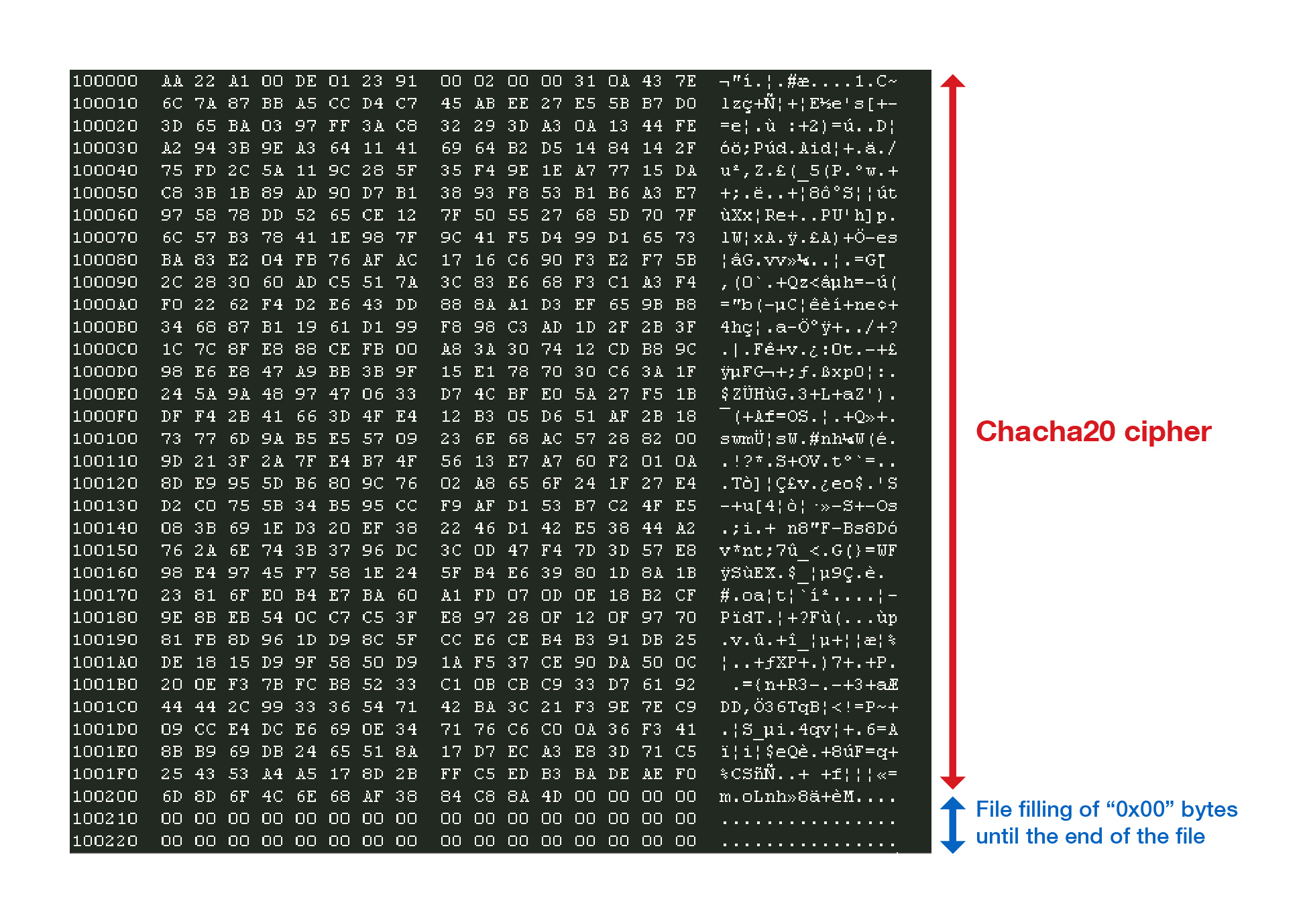 Hex view of the encrypted file