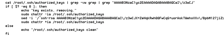 Code showing SSH keys sanitization